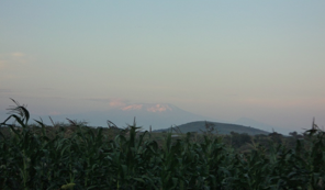 View of Mount Kilimanjaro from Arusha